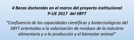becas pue2017