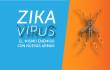 Zika: El mismo enemigo con nuevas armas